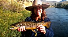 colorful-beaverhead-brown-trout